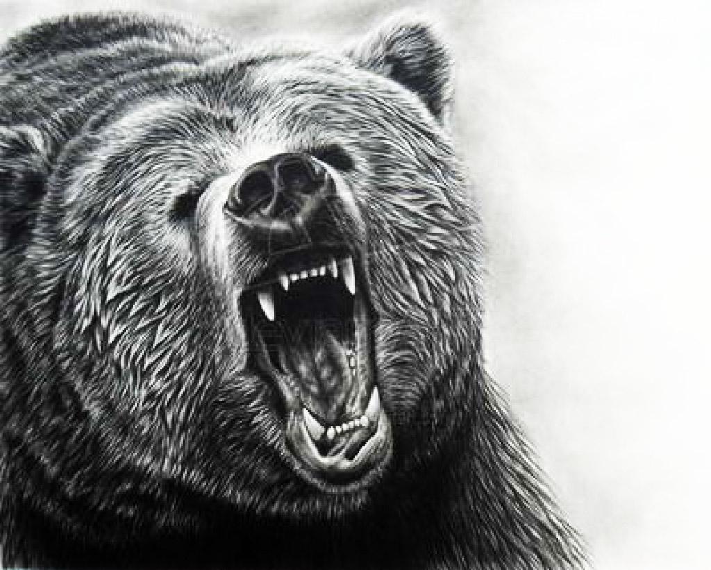 Тату медведь страница 2